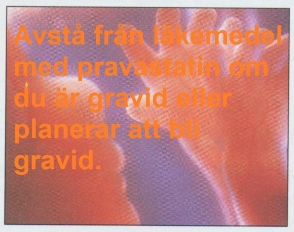 pravastatin graviditet
